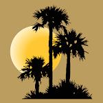 Drummond Community Bank Mobile APK icon