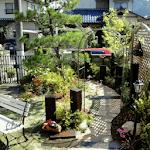 Modern Home Garden Design icon
