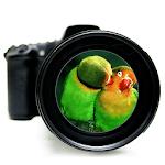3D Zoom HD Camera 💎⚜️ icon