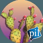 PI VR Wildlife Wonders icon