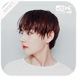 BTS V Wallpapers KPOP icon