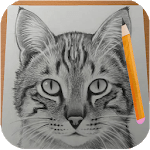 How to Draw Cats icon
