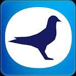 TOPigeon Online icon