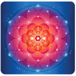 Law of Attraction Library icon