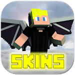 Wing Skins icon