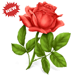 🌹 WAStickerApps Flowers icon