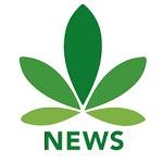 Cannabis News Network APK icon