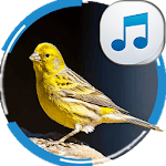 Canary Sounds icon