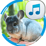 Chinchilla Sounds icon