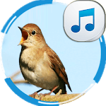 Nightingale Sounds icon