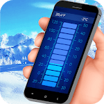 Professional thermometer icon