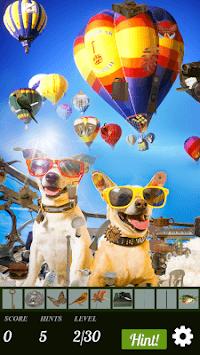 Hidden Object - Travelling Pets APK screenshot 1
