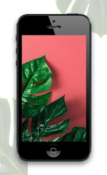 Tropical Wallpapers APK screenshot 1