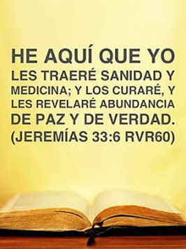 Biblia Reina Valera APK screenshot 1