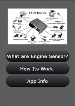 Auto Engine Sensor Info APK screenshot 1