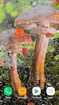 Beautiful Autumn Live Wallpaper HD APK screenshot 1