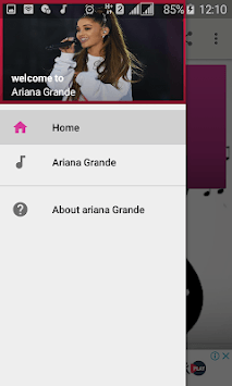 ariana grande songs without internet APK screenshot 1