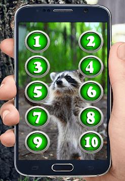 Sounds of Raccoon APK screenshot 1